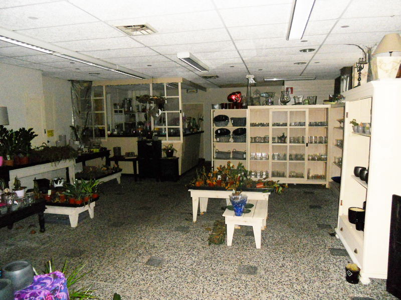Uitgelezene Inventaris en voorraden bloemenzaak - Onlineveilingmeester.nl EO-07